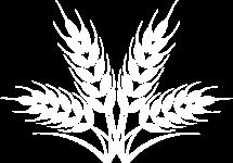 hd-harvest-2